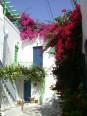 Vieux Parikia : maisons