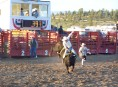 Rodeo : bull riding